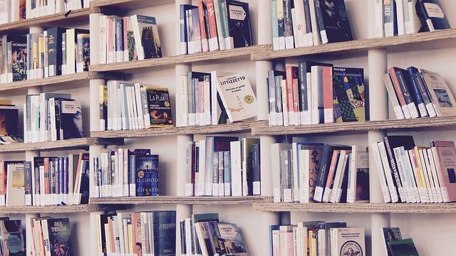 bibiliotheque pleine de livre