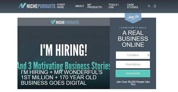 blog niche pursuits